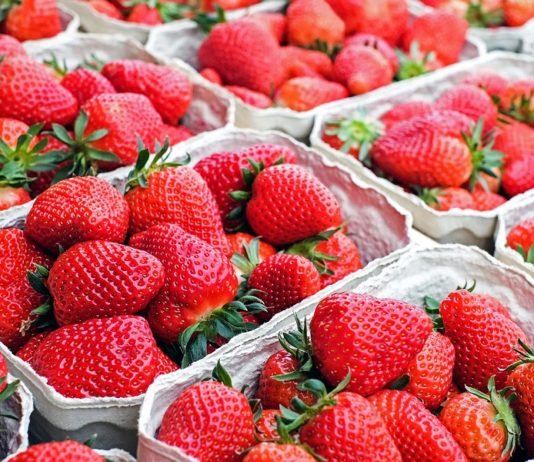 Queensland Strawberry Needle Tampering Case: Metal Detectors Aid of Strawberry Growers